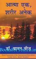 Same Soul Many Bodies (Hindi Translation)